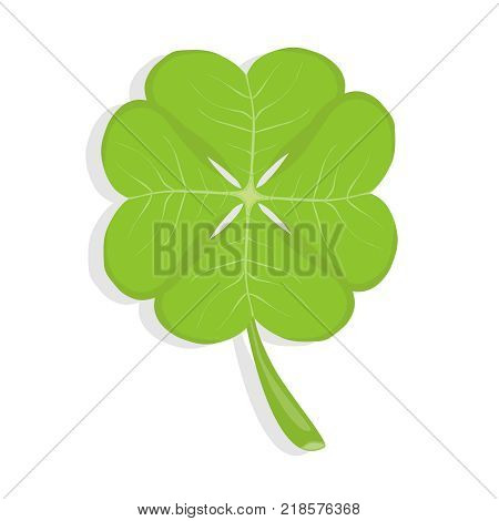 Clover four-leafed clover a symbol of luck. Realistic green clover. Flat design vector illustration vector.