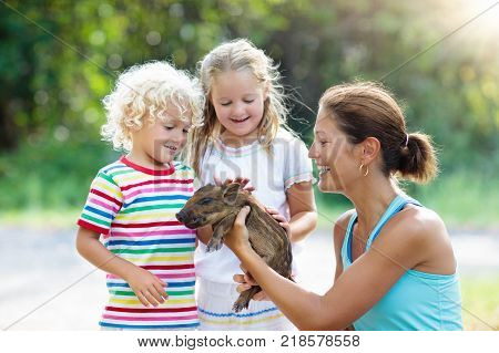 Kids With Baby Pig Animal. Children At Farm Or Zoo