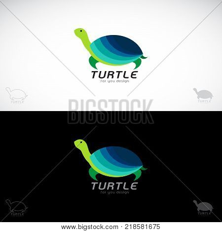 Vector of turtle design on white background and black background. Symbol Animals. Reptile.