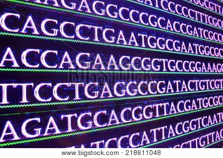 Sequencing the genome. Sequence of nucleotide bases in DNA.