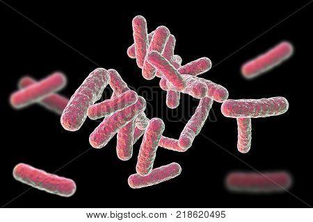 Human pathogenic bacteria isolated on black background, 3D illustration