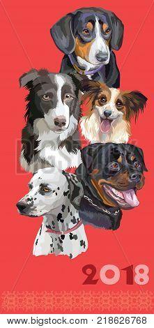 Vertical postcard with dogs of different breeds (Rottweiler; border collie; Dalmatianpapillon Entlebucher Mountain Dog )on red background. 2018 year of dog.