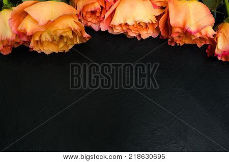 Orange and red autumn roses dark background. Symbol of deep feelings and elation. Copyspace concept