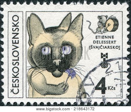 CZECHOSLOVAKIA - CIRCA 1981: A stamp printed in the Czechoslovakia is dedicated to 8th Biennial Exhibition of Children's Book llustrations shows Cat Holding Flower by Etienne Delessert circa 1981