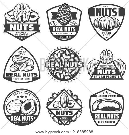 Vintage monochrome natural nuts labels set with walnut pecan hazelnut coconut peanut almond cashew pine brazil nuts isolated vector illustration