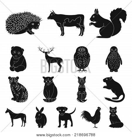 Realistic animals black icons in set collection for design. Wild and domestic animals vector symbol stock  illustration.