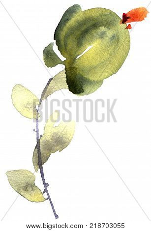Watercolor and ink illustration of flower with leaves. Sumi-e u-sin painting. Decorative background for postcard invitation greeting card.