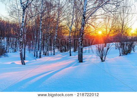 Red sunset in frozen winter forest
