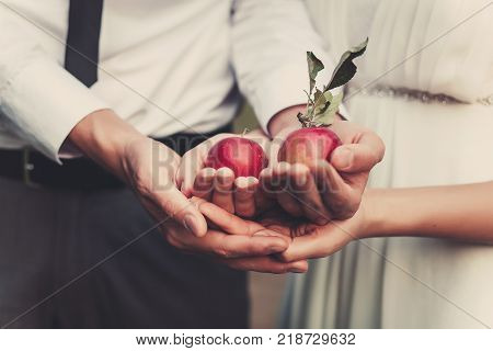 the couple holding two red apples in hands. Close focus. Love story concept.