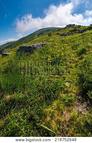 path through grassy meadow to huge boulders. beautiful mountainous landscape on summer morning