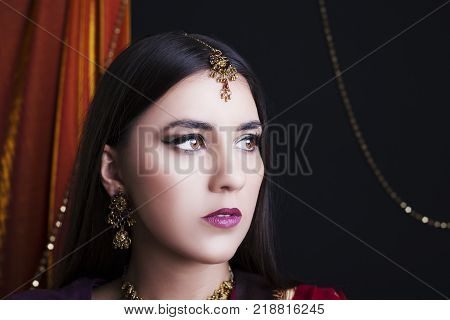 Beauty brunette Indian woman portrait. Hindu model girl with brown eyes. Indian girl in sari. Indian culture