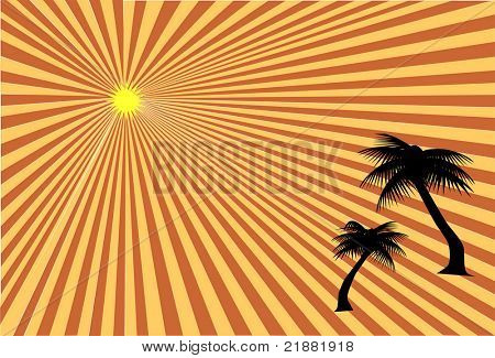Palm trees at sunset vector
