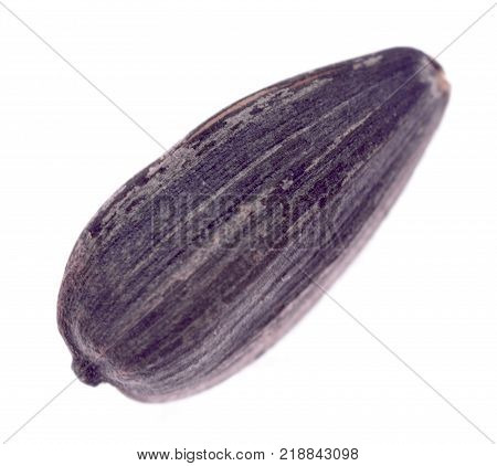 Sunflower seed isolated on a white background