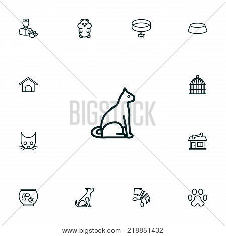 Collection Of Caw, Cat, Grooming And Other Elements.  Set Of 13 Pets Outline Icons Set.