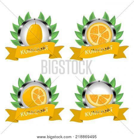 Abstract vector icon illustration logo for citrus fruit kumquat slice half pear. Kumquat pattern consisting of card label natural citruses food. Eat sweet pears Citrus fruits kumquats on health.