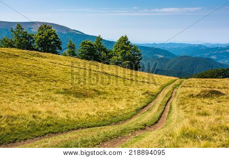 countryside road through grassy hill. rural transportation concept. lovely summer landscape in Carpatian mountains