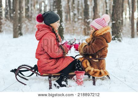 children play in the winter forest. The girls sit on the sled and drink a hot drink from the thermos.