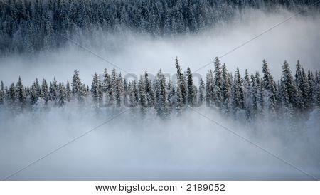 Peace River Mist