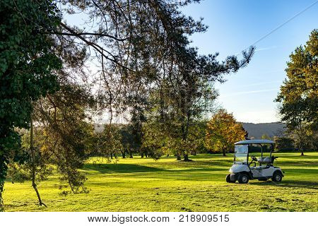 a golf carts on a golf course