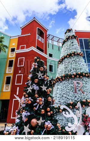 Two Trees at Christmas in Willemsted Curacao