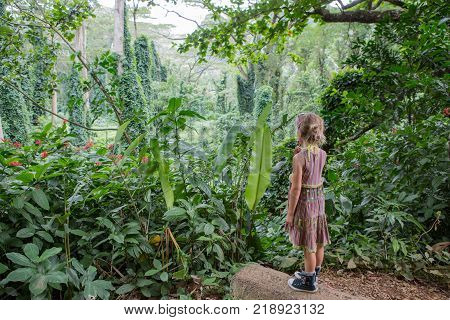 Little girl eating lollipop at Na Ala Hele Monoa Falls Trail Oahu Hawaii standing admiring the lush tropical green vegetation in paradise