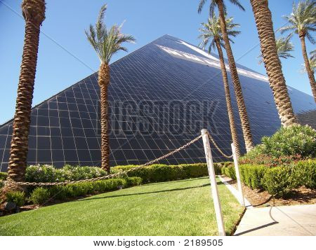 Pyramid And Palm Trees