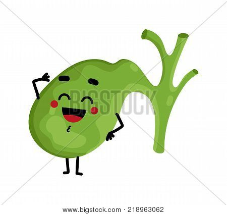 Human gallbladder cute cartoon character. Body anatomy element, health medical sign, internal organ, human body physiology isolated on white background vector illustration.