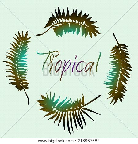 Brush Painted Silhouette Of Tropical Palm Tree Leaves Elements. Vector Grunge Sumi-e Design For Card