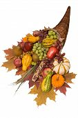 Cornucopia filled with fall harvest spilling out of it's horn of plenty poster