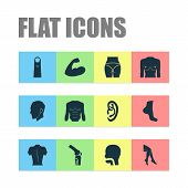 Physique icons set with leg, muscle, boob and other breath elements. Isolated vector illustration physique icons. poster