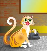 posh alley cat with handbag. poster