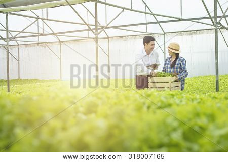 Asian Woman Farmer Hold Wooden Basket Show To Asian Man Scientist Come Check Quality Of Green Vegeta