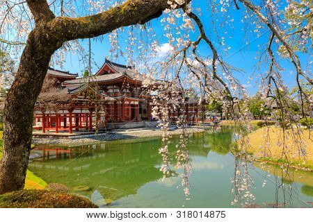 The Japanese Byodo-in Phoenix temple, world unesco heritage in the Uji city, Japan