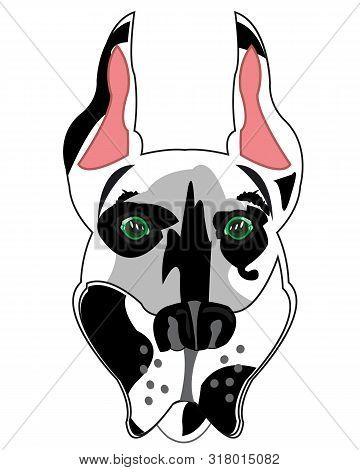 Vector Illustration Of The Mug Of The Dog Spotted Doberman