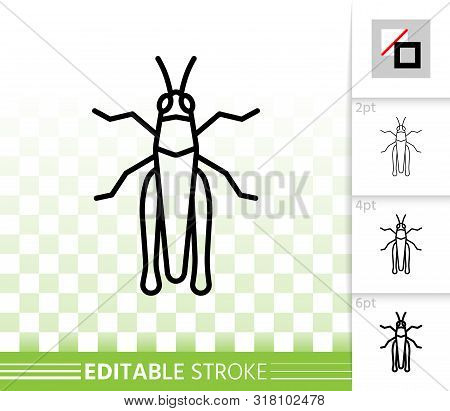Grasshopper Thin Line Icon. Outline Web Sign Of Insect. Cricket Bug Linear Pictogram With Different