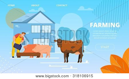Vector Illustration Livestock Farming Cartoon. In Foreground Cow Stands In Street. Smiling Male Farm