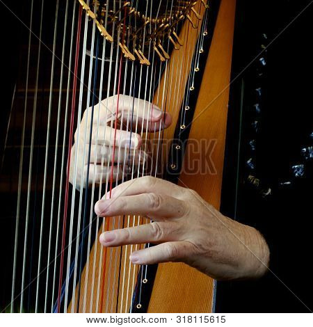 Two Hands Of A Woman Plucking The Strings Of A Harp.