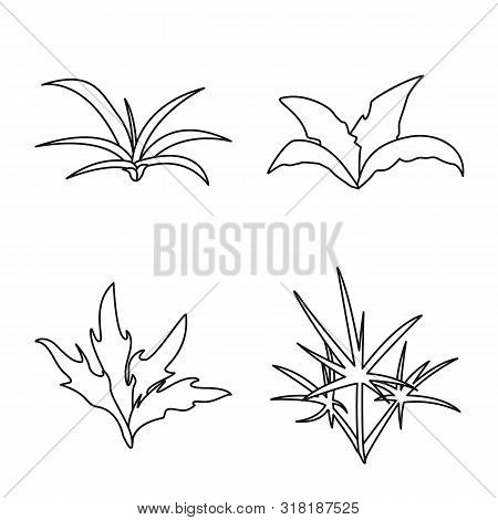 Isolated Object Of Hedge And Shrub Sign. Set Of Hedge And Floral Stock Vector Illustration.