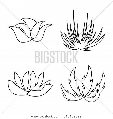 Isolated Object Of Hedge And Shrub Sign. Collection Of Hedge And Floral Stock Vector Illustration.