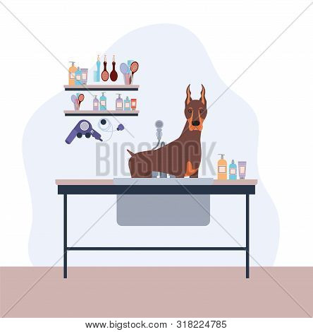 Cute Doberman Dog Care Salon Scene Vector Illustration Design