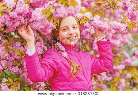 poster of Pink is my favorite. Little girl enjoy spring. Kid on pink flowers of sakura tree background. Kid enjoying pink cherry blossom. Tender bloom. Pink is the most girlish color. Bright and vibrant