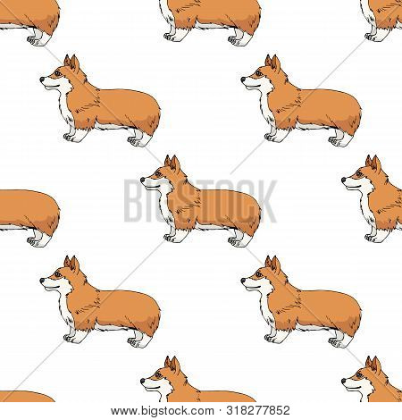 Seamless Pattern With Cute Cartoon Pembroke Welsh Corgi On White Background. Endless Texture With Fu