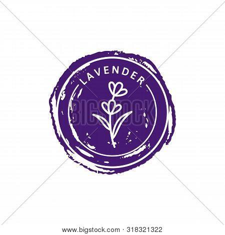 Lavender Logo In Trendy Linear Style. Vector Herbal Organic Lavender Badges Of Packaging Design Temp