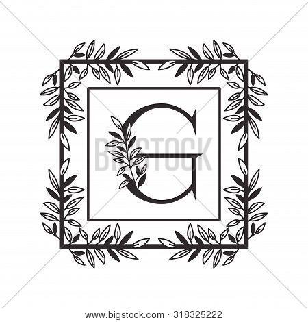 Letter G Of The Alphabet With Vintage Style Frame Vector Illustration Design