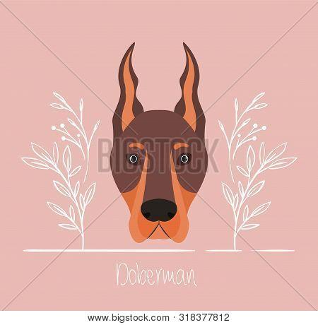 Cute Doberman Dog Pet Head Character Vector Illustration Design