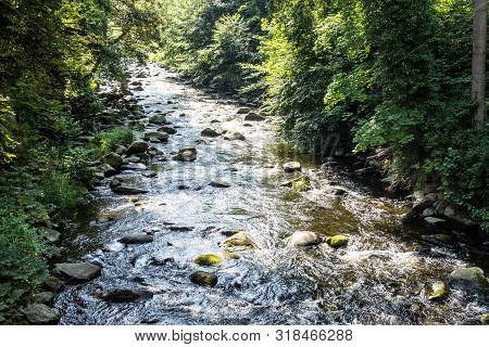A Beautiful View On A Mountain River In The Forrest At A Summer Day