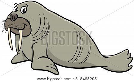 Cartoon Illustration Of Funny Walrus Wild Animal Character
