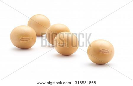 Soybean Isolated On White Background, Close - Up