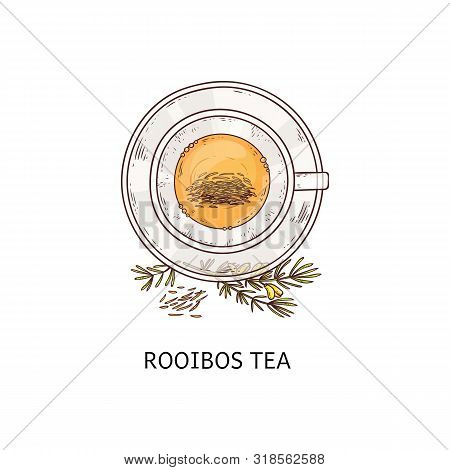 Rooibos Tea In Glass Cup Drawing Seen From Top Overhead View