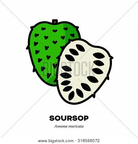 Soursop Fruit Icon, Outline With Color Fill Style Vector Illustration, Whole And Halved Fruits